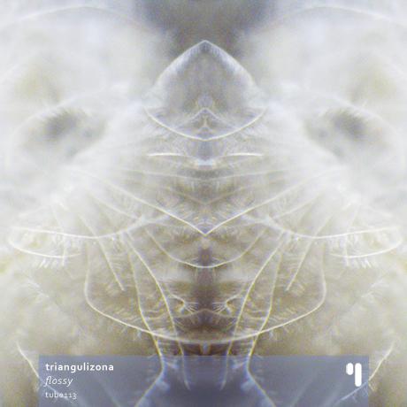 TrianguliZona - Flossy (album art)